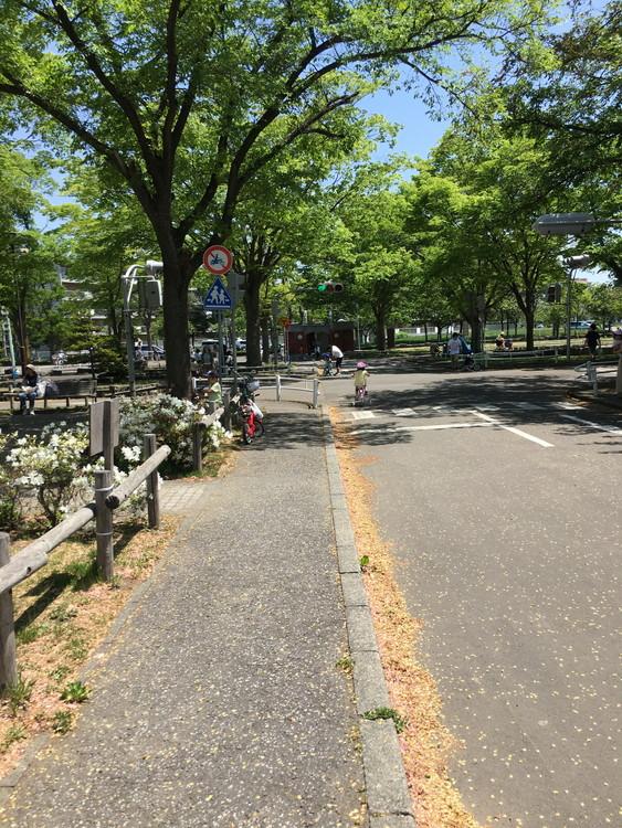 農試公園、交通コーナー