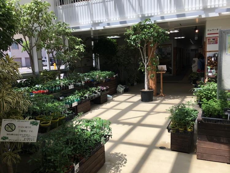 豊平公園 緑のセンター